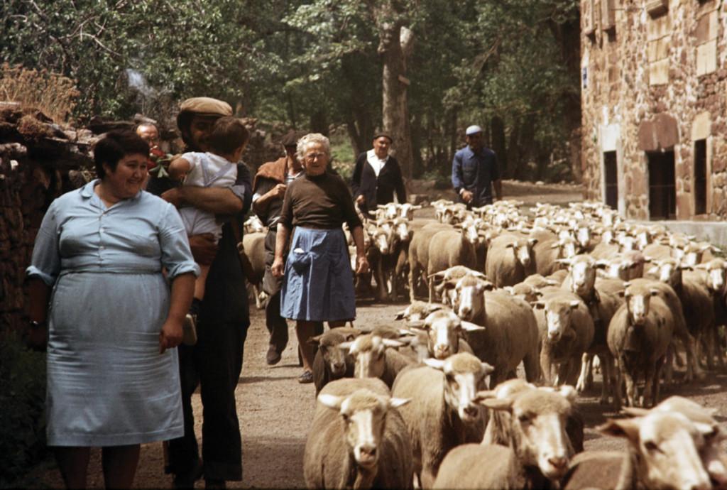 Trashumantes italianos en el Parque Nacional del Abruzzo. Hacia 1940.