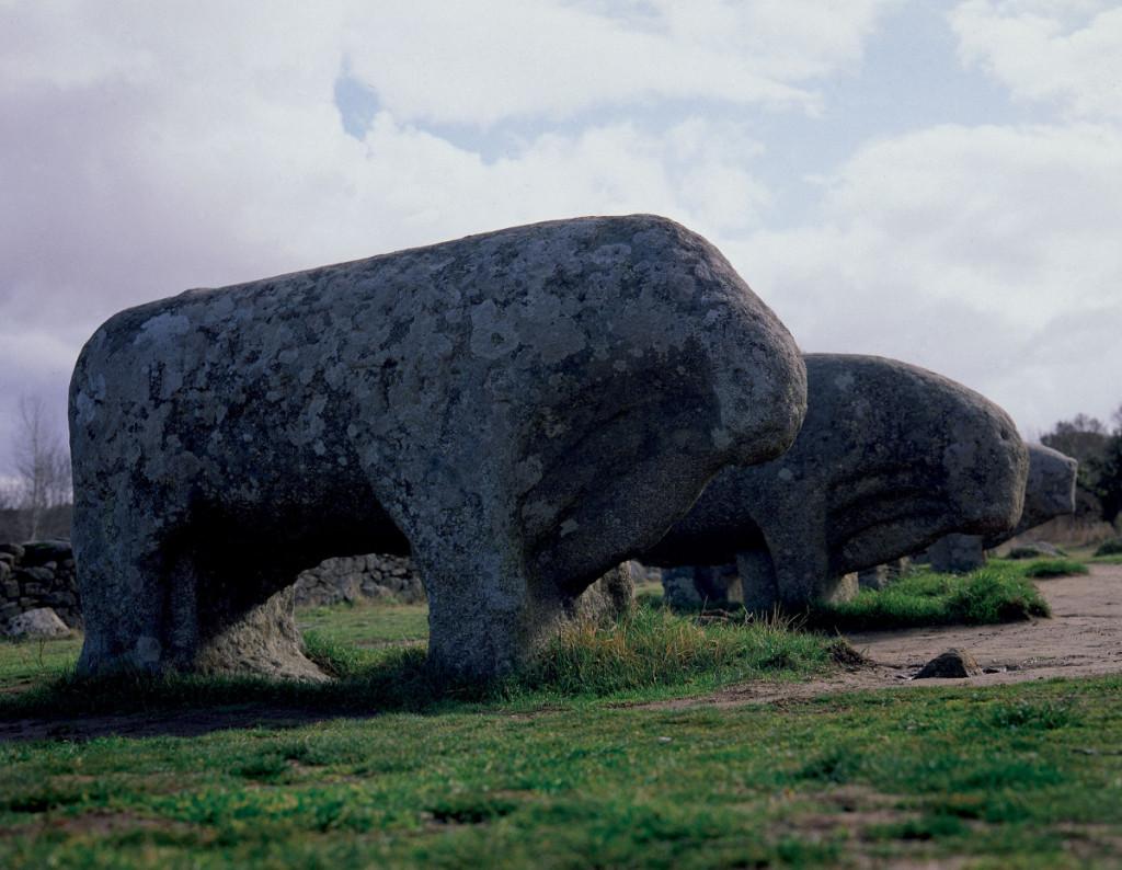 Verracos, esculturas zoomorfas celtíberas que algunos autores suponen vinculadas a antiguos caminos ganaderos.